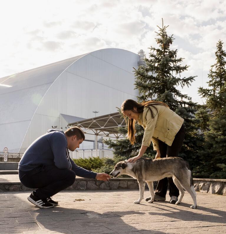 Triff die Hunde von Chernobyl